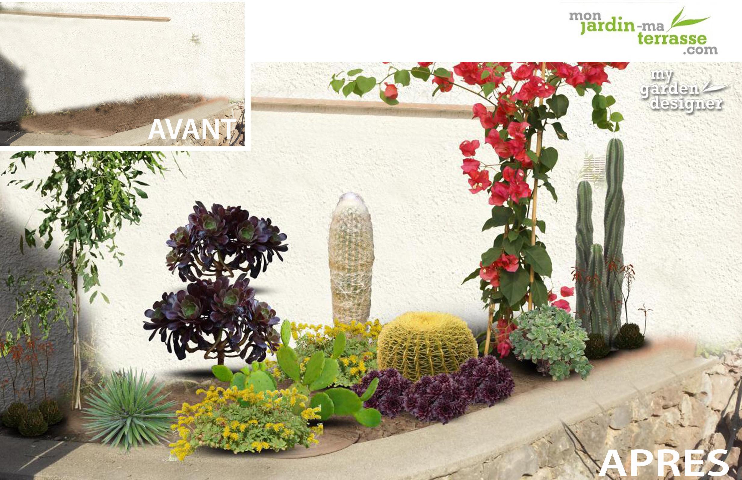 cr er une jardini re de plantes exotiques monjardin. Black Bedroom Furniture Sets. Home Design Ideas