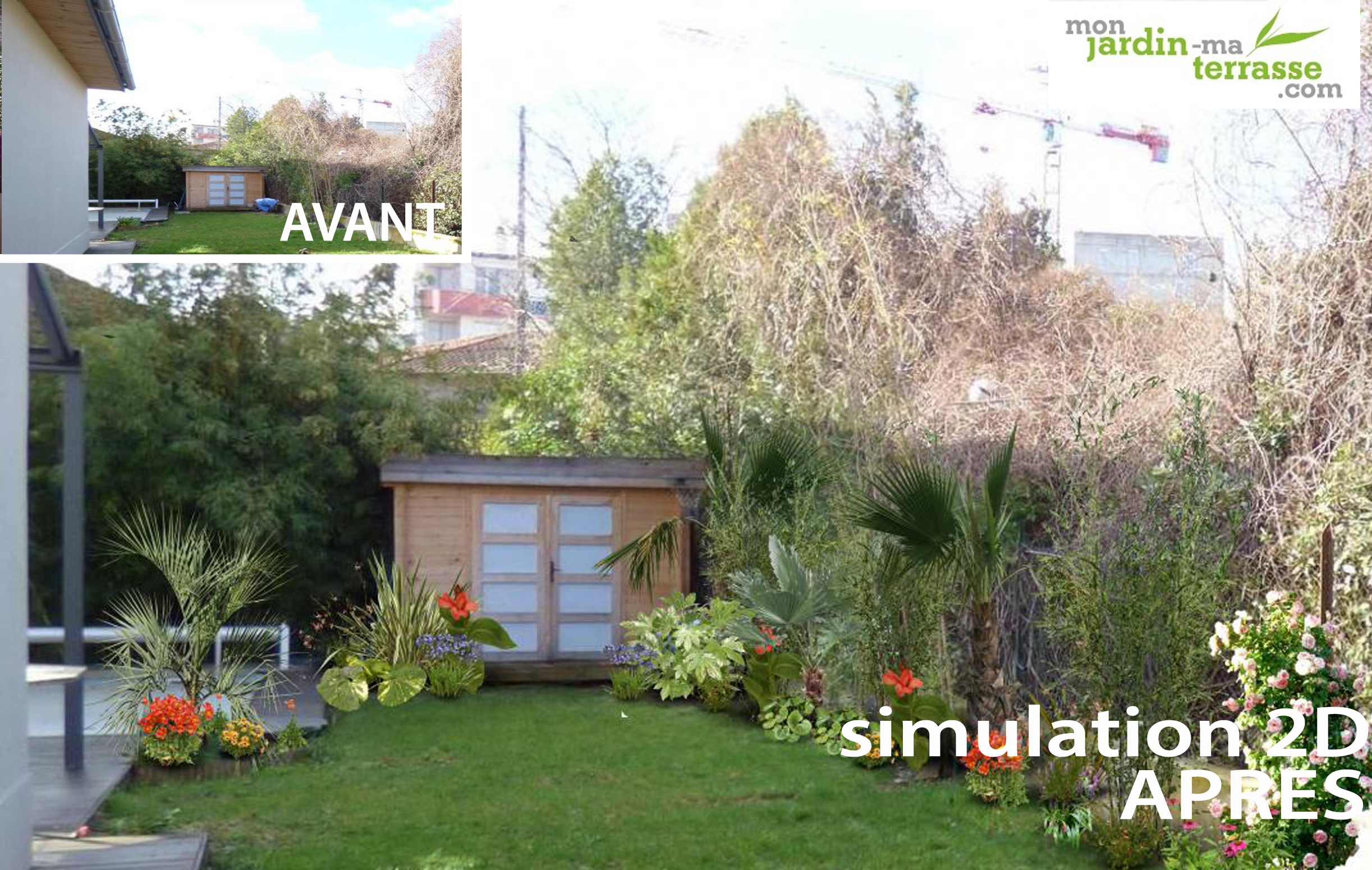 Cr ation d un jardin exotique monjardin for Jardin creation